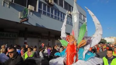 Carnival time! Winner of the Great Lady competition — Stock Video