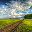 Stock Photo: HDR image of straight dirt road