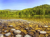 River shore under clear blue sky — Stock Photo