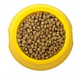 Dry cat food in yellow bowl — Stock Photo