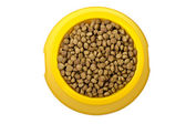 Dry cat food in yellow bowl — Stock fotografie