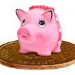 Piggy ceramics moneybox on dollar coin — Stock Photo #26141669