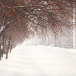 Beautiful snowy winter landscape with path way — Stock Photo