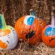 Painted Pumpkins — Stock Photo #13742412