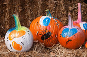 Painted Pumpkins — Stock Photo