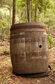 Old Barrel — Foto de Stock
