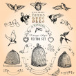 Vintage Style Birds, Bees and Banners Vector Set — Vettoriali Stock