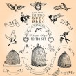 Stock Vector: Vintage Style Birds, Bees and Banners Vector Set