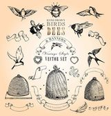 Vintage stijl vogels, bijen en banners vector set — Stockvector