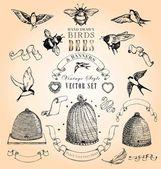 Vintage tarzı kuşlar, arılar ve afiş kümesi vektör — Stok Vektör