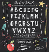 Vintage Back To School Chalkboard Hand Drawn Vector Set — Stock Vector