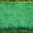 Green grass frame background — 图库照片