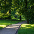 Stock Photo: Summer landscape in park Kolomenskoe, Moscow city.