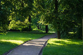 Summer landscape in park Kolomenskoe, Moscow city. — Stock Photo