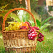 Fruit basket - Stock Photo