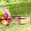 Still Life with Apples and a book — Stock Photo