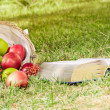 Stock Photo: Still Life with Apples and book