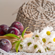 Stock Photo: Still life with plums and flowers