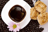 Mug coffee and biscuits — Stock Photo