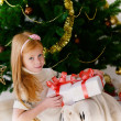 Christmas box — Stock Photo #15706247
