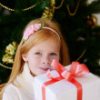 Christmas box — Stock Photo #15706361