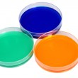 Multi color well plate dish — Stock Photo