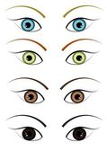 Illustration of the four different colour eyes — Stock Photo