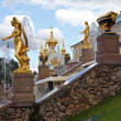 peterhof fountain — Stock Photo