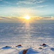 Sunny winter evening in the Gulf of Finland — Stock Photo