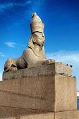 Sphinx on embankment of the river Neva — Stock Photo