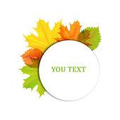 Autumn design of leaves — Stock Vector