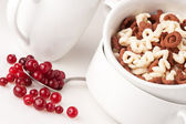 Alphabet cereal in the white bowl with ripe сranberries — Stock Photo