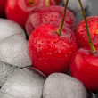 Cherries and ice cubes — Stock Photo