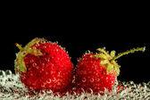 Strawberry water splash — Stock Photo