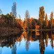 Autumn park with lake — Stock Photo #34288265