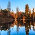 Autumn park with lake — Stock Photo #34288265