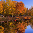 Autumn park with lake — Stock Photo