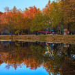 Autumn park with lake — Stock Photo #34288275