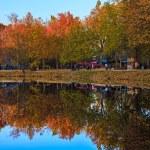 Autumn park with lake — Stock Photo #34288275
