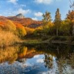 Autumn park with lake — Stock Photo #34288337