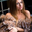 Attractive young woman wearing a fur — Stock Photo #13379149