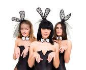 Three sad woman wearing a bunny costumes — Stock Photo