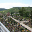 German Cemetary — Stock Photo #13488827