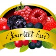 Royalty-Free Stock Vector Image: Label with berries