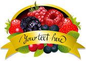 Label with berries — Stock Vector