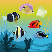 Vector colorful fishes — Stock Vector