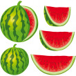 Water melon — Stock Vector #17453921