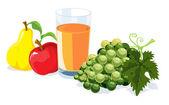 Fruit and juice — Wektor stockowy