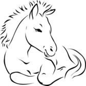 Foal - black outline illustration — Stock Vector