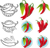 Chili Pepper illustration - Illustration — Stock Vector